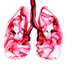 Aerosol Optical Tweezers in Drug Delivery to the Lung and Lung Toxicology Research